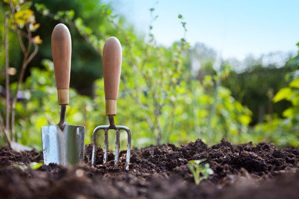 Gardening injuries